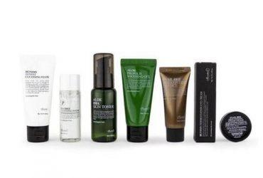 Was sind die besten koreanischen Bio-Hautpflegemarken?